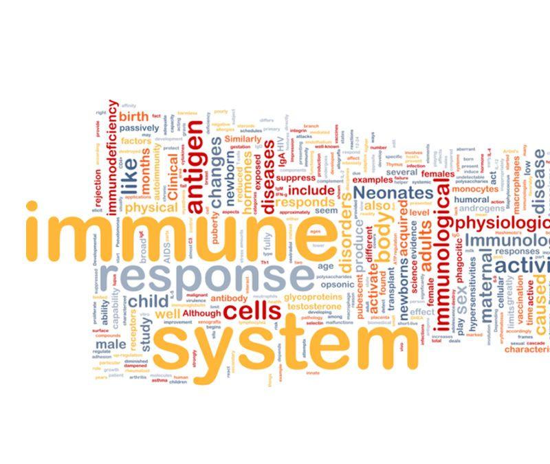 Enfermedades autoinmunes, qué son y cómo actúan